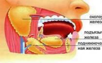 Слюноотделение после еды