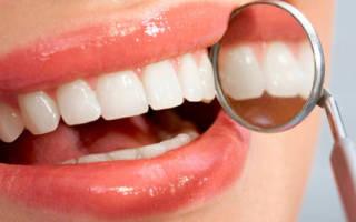 Строение передних зубов человека