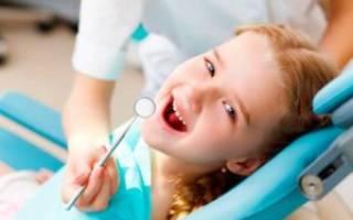 Коренные зубы это какие
