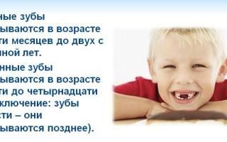Сколько молочных зубов у детей